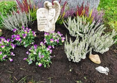 Grab mit neuer Bepflanzung und einer Engelsfigur
