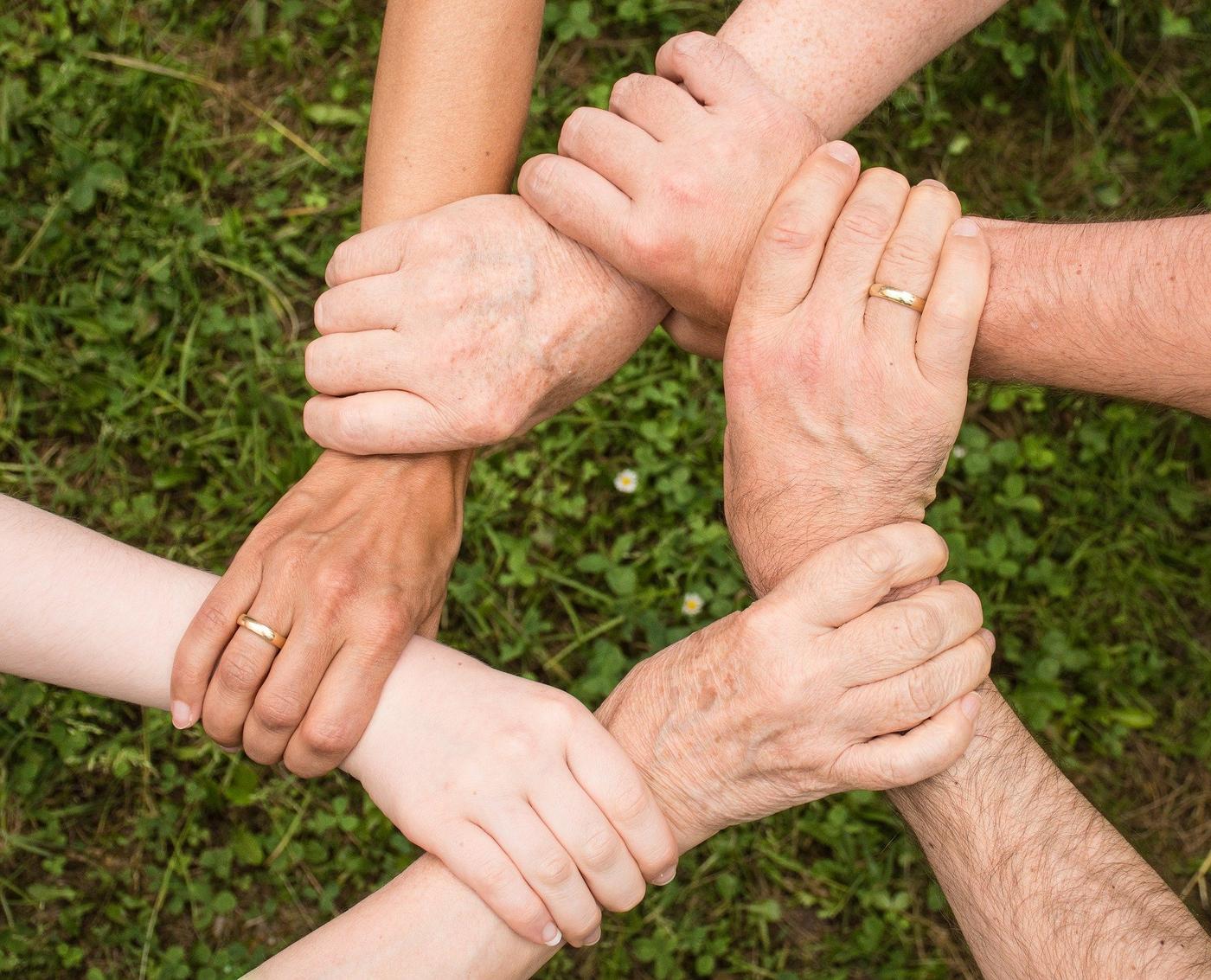 5 Hände greifen sich am Handgelenk in Form eines Kreises, Hintergrund Wiese