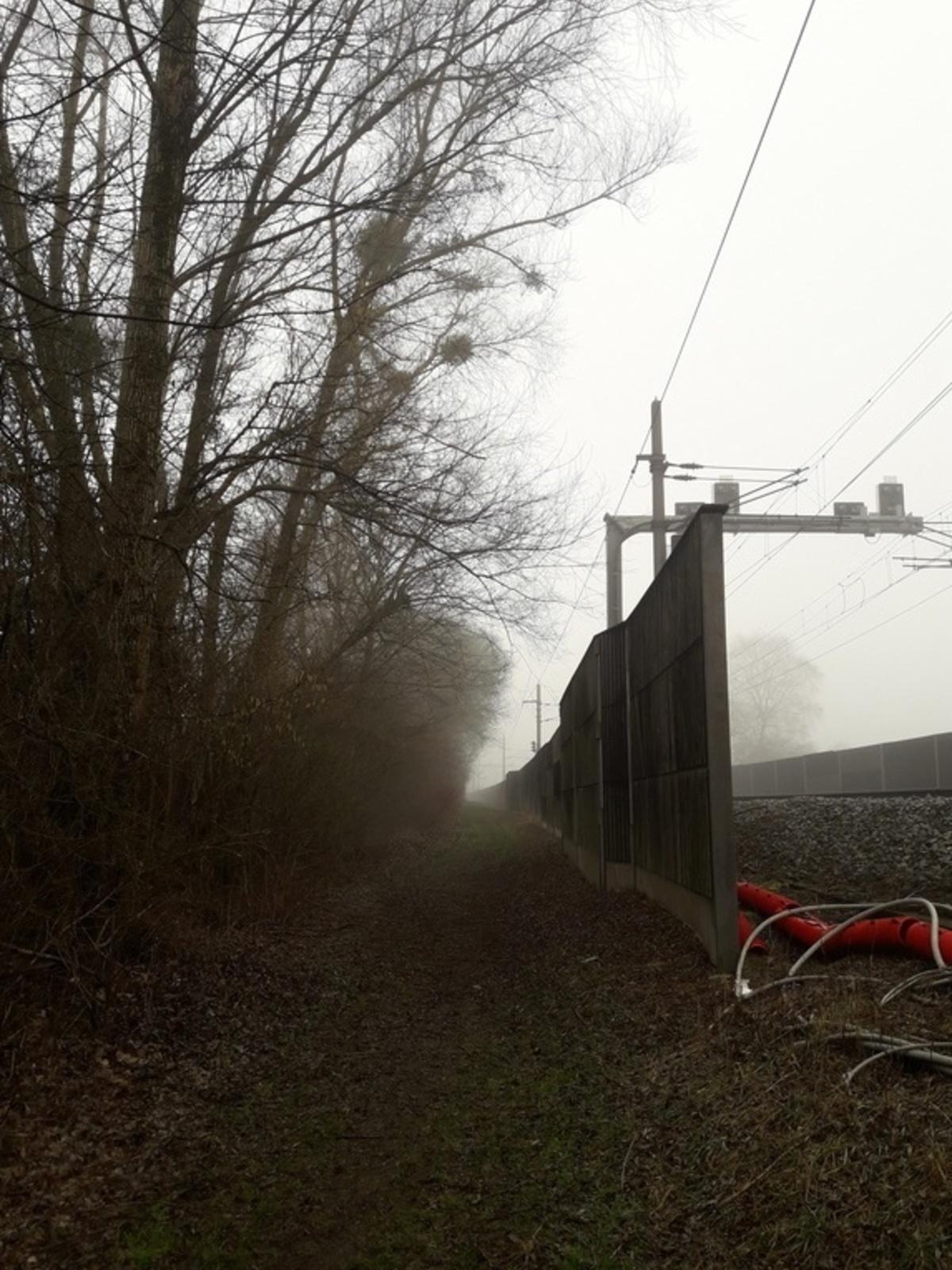 Weg bei Bahn